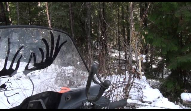 2013 Hunting Whitetail Deer Part 1