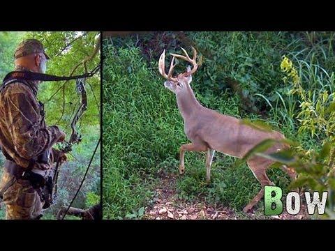Bow Hunting Deer: Early Season Success!