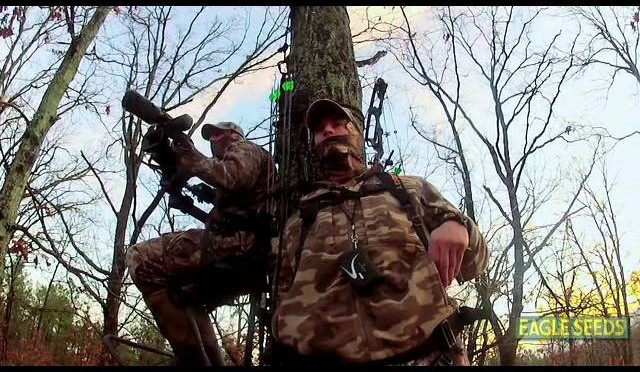 BOW HUNTING: Hunting Kentucky Whitetails