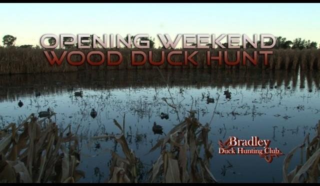 Bradley Duck Hunting Club – Opening Weekend Wood Duck Hunt – Part 1!