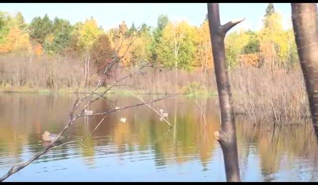 Duck Hunting: Wisconsin Northern Duck Opener 2014 – Hardline Outdoors
