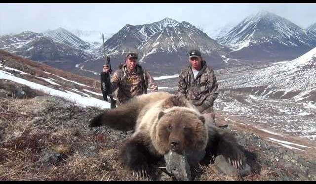 Grizzly Bear Hunt – Stuck N The Rut
