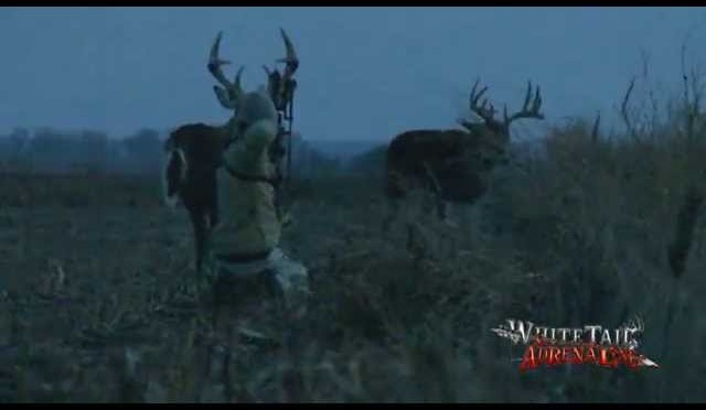 Hunter Charges Big Buck | THE RECKONING Round 1 | Whitetail Adrenaline | Public Land Whitetails