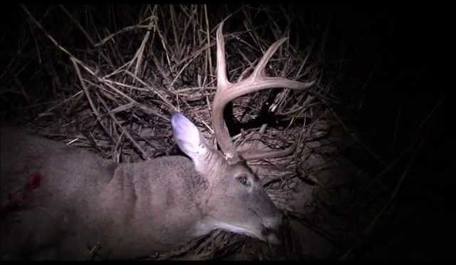 Kansas public land DIY whitetail deer hunt