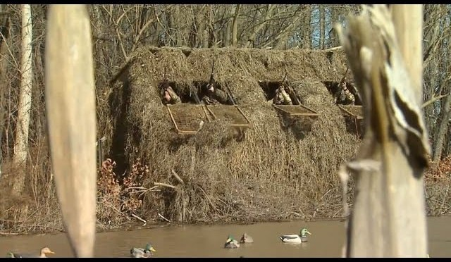 Kentucky Duck Hunt – Must see!