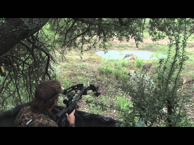 Legendary Whitetail Deer Goes Down with Crossbow