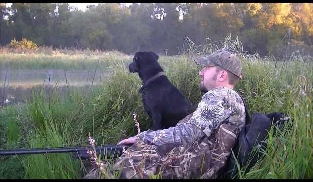 Missouri Duck hunt. Teal