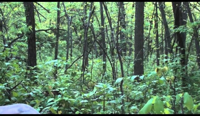"Missouri Turkey Hunt – Public Land 2012 –  ""Fired Up Chicken"""
