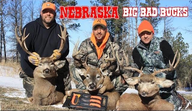 Nebraska Deer Hunting:  Whitetail AND Mule Deer Bucks