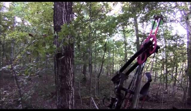 Opening Weekend Deer Archery Indiana 2015