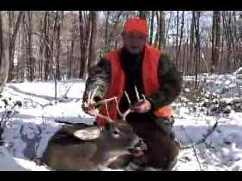 Pennsylvania Back Country PA Whitetail Deer Hunt