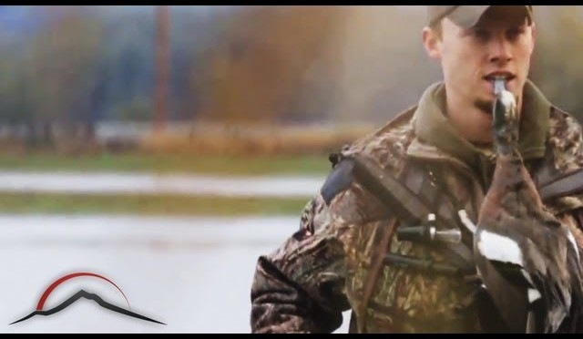 Sheet Water Wigeon – Duck Hunt