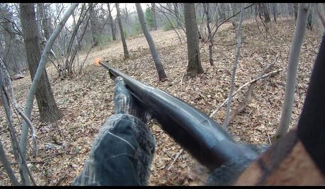 Spring Turkey Hunt with Shotgun in Michigan
