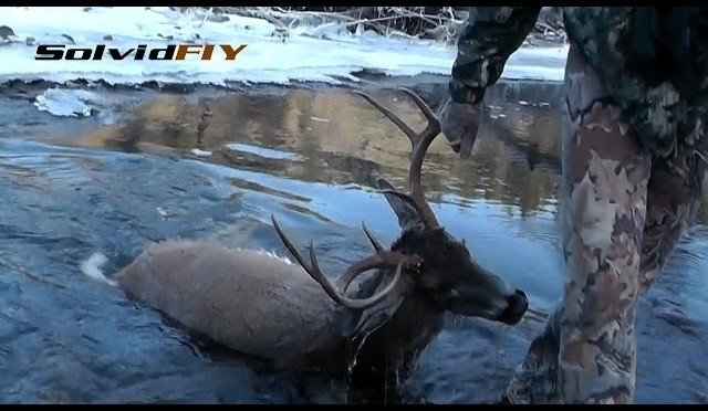 The Big Splash – Whitetail Deer Hunting by Solvid FIY