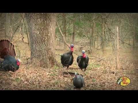Turkey Hunting: Bow/Gun Tag Team Nebraska Turkey Hunt Plus A Frosty Gobbler In Missouri