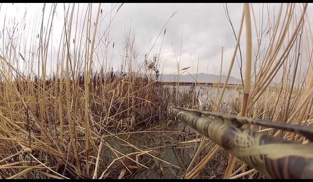Utah Duck Hunt (3)-CaptureYourHunt GoPro Mount