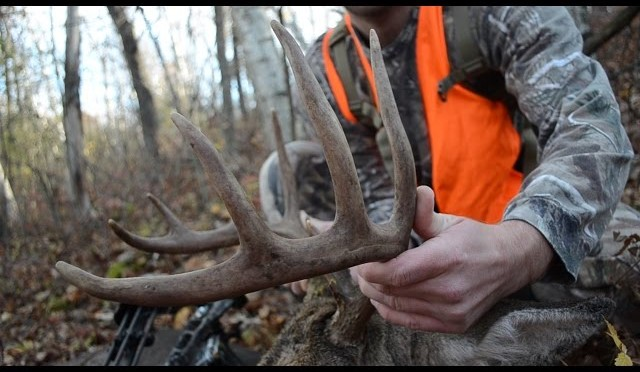 Whitetail Buck Hunt Self Taped – Bow Hunt in Minnesota – Nicholas Bjerke