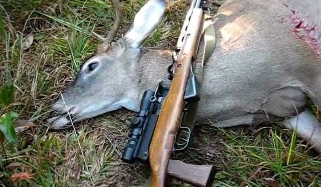 Whitetail deer hunting with an SKS – 7.62×39
