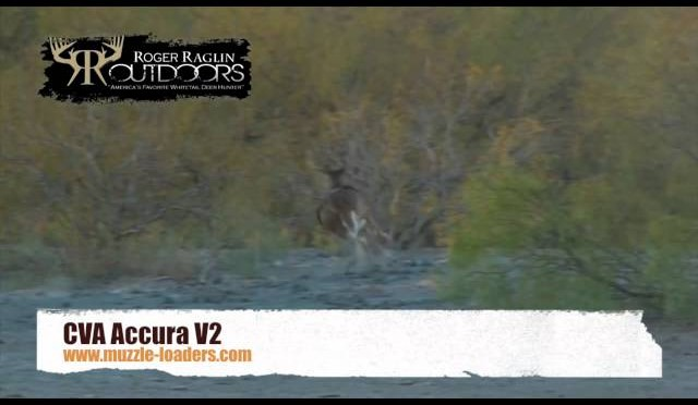 Whitetail Deer Hunting with CVA Accura V2 Muzzleloader Rifle
