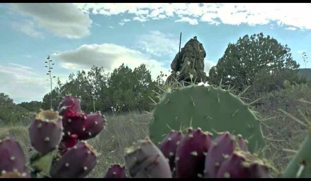 2015 Arizona Bear Hunt Teaser
