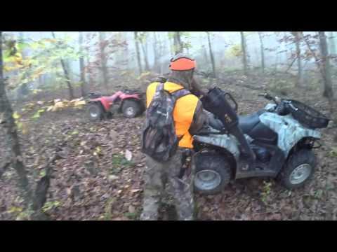 Arkansas Bear Hunt