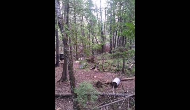 Bear hunt manitoba