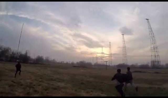 BOBUR ARASLANOV PHEASANT HUNTING WITH HAWK 29 11 2015 (2)