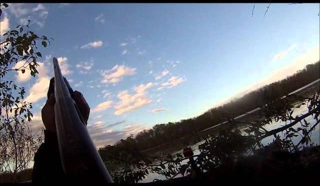 Duck hunting November 2015
