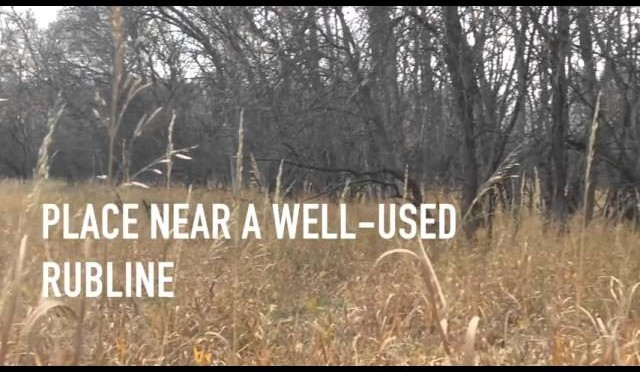 Minnesota Deer Hunting