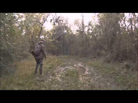 Whitetail Deer Hunt 11-2015