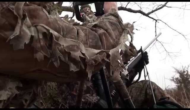 Arkansas coyote hunt