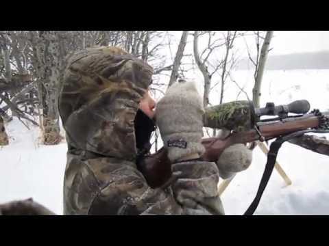 Coyote Hunting 2012 (Part 1 Maggy)