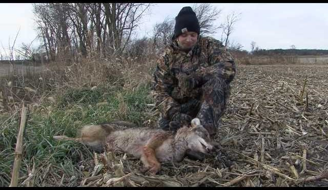 Coyote Hunting  INDIANA HUNTER #16