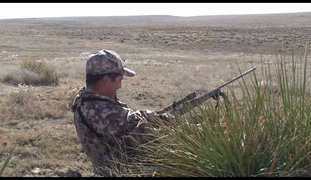 Coyote Hunting -Predator Hunting – Bucking The Odds 22