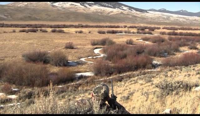 Coyote Hunting – Predator Hunting – Predator Down #18 – Long Range Coyotes with Gunwerks Rifle