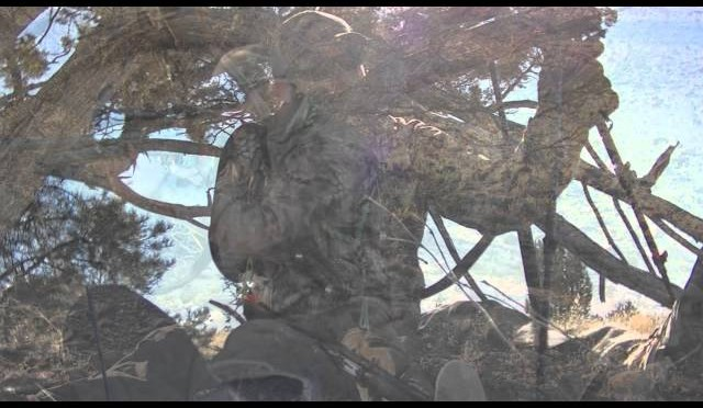 Coyote Hunting Tips – Stand Set Up