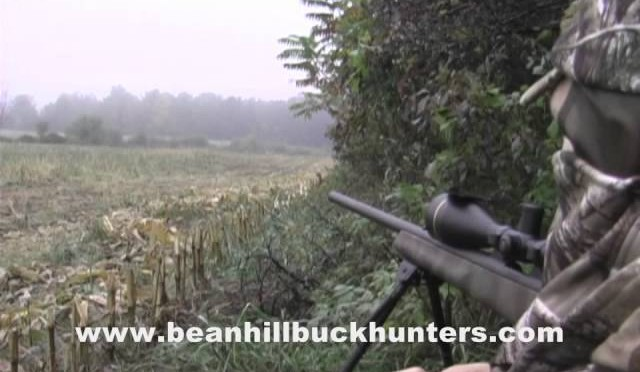 Eastern Coyote Hunting in Upstate New York: Opening Weekend 2009, Day 2