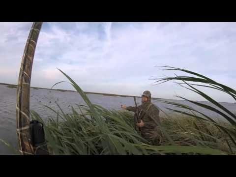 Louisiana Duck Hunting November 14 2015