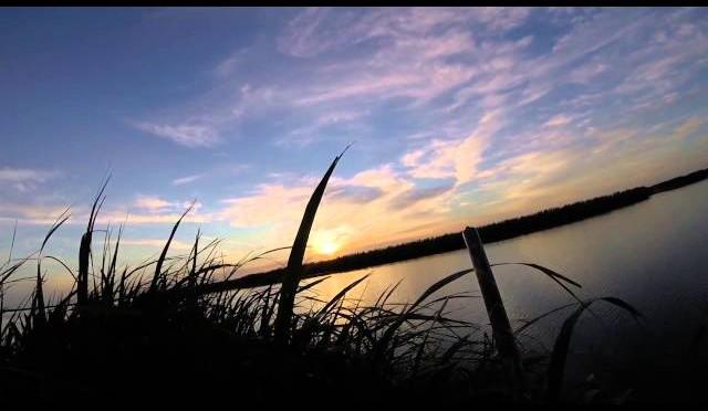 Louisiana Duck Hunting November 15 2015