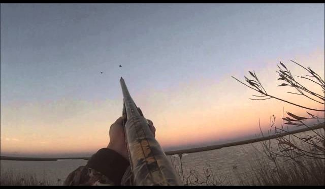 Middle December Texas Duck Hunting