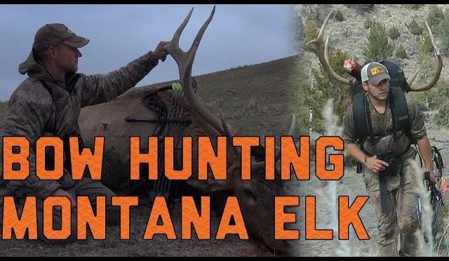 Archery Elk Hunts in Idaho and Montana