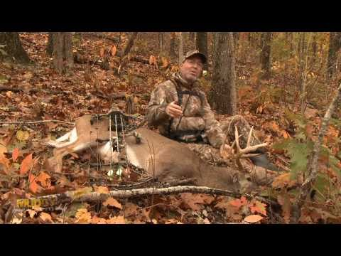 BOW HUNTING: Buck Down!