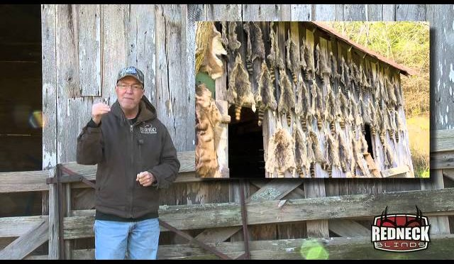 BOW HUNTING: Excited For A Doe, Plus Ideas For Trapping Coyotes