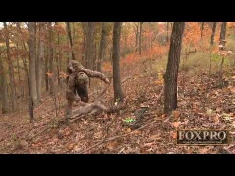 Bow Hunting Kentucky Whitetails: Arrows Flying And Does Down!