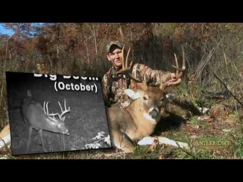 Bow Hunting: The Halloween Buck! Definitely A Treat