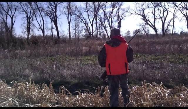 Cody Pheasant Hunt 2