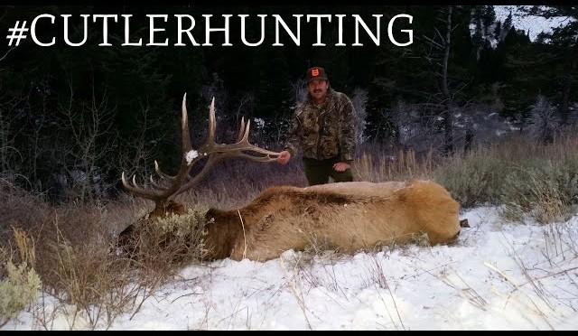 Cutler Hunting: 2015 Elk Season