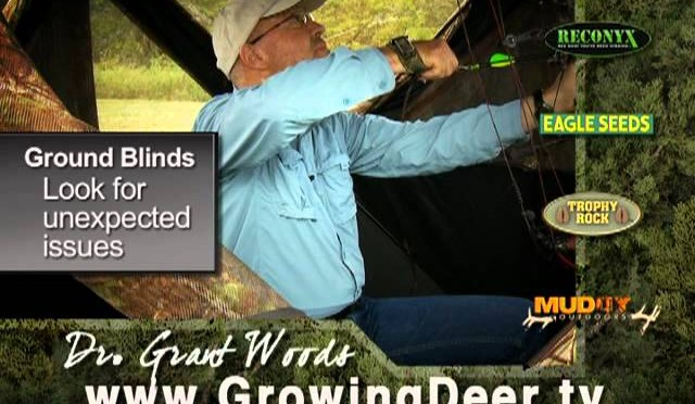 Deer Hunting from Ground Blinds