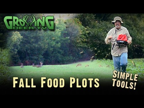 Deer Hunting: Secrets For Quick Fall Food Plots