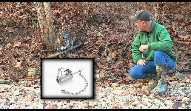 DEER Management: Predator Trapping Spree by GrowingDeer.tv